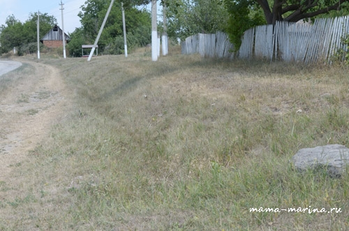трава на улице