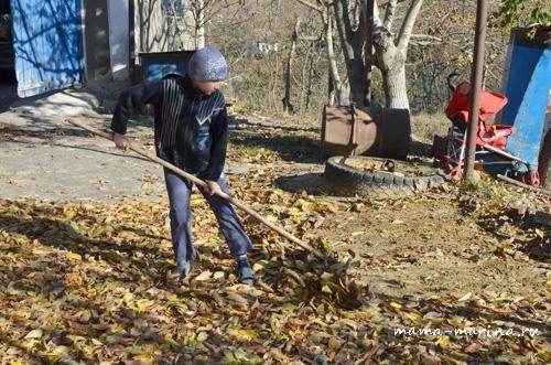 Кирилл листья для игры собирает